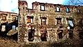 Ruiny zamku w Kamiennej Górze (11).jpg
