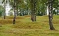 Runnevåls Gravfält (5).jpg
