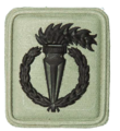 SANDF Qualification Pathfinder badge embossed.png