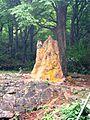 SRI JAYAVEERA ANJANEYAR TEMPLE, NH7, THOPPUR - panoramio (7).jpg