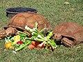 Salad Time (8484962054).jpg