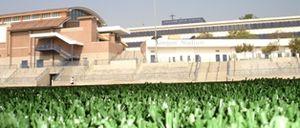 Salesian High School (Los Angeles) - Field View