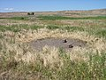 Salt lick for cattle on Snake River Plain, Idaho.jpg