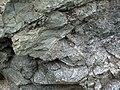 Sandorite intrusive contact with country rock (Sandor Dike, Neoarchean, 2.703 Ga; Route 17 roadcut northeast of Wasp Lake & north of Wawa, Ontario, Canada) 4 (48342405967).jpg