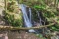 Sankt Blasien Windbergwasserfall Bild 1.jpg