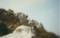 Sashegy-Medveszikla.PNG