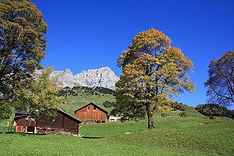 Schächental - Autumn in Schächental