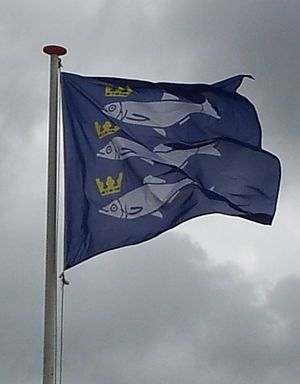 Flag of Scheveningen - Flag of Scheveningen
