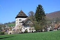 Schloss Auenstein 8445.JPG