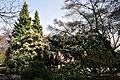Seattle - Parsons Gardens 10.jpg