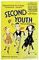 Second Youth poster.jpg
