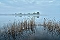 Seliger Lake. Southern coast. View of the island of Crow on a foggy morning.jpg