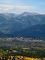 Selva (Puig de Santa Magdalena).jpg