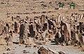 Shahar Yeri cemetry credit to Ghazal Kohandel 2 قبرستان شهر یری عکاس غزاله کهن دل.jpg