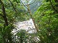 Shakadang Trail 砂卡礑步道 - panoramio (2).jpg