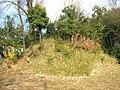 Shiratori Kofungun01-01.jpg