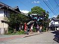 Shuzenji onsen 20110919 F.jpg