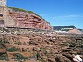 Sidmouth , Rock Pools - geograph.org.uk - 1158653.jpg