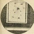 Silenus Alcibiadis, sive, Proteus - vitae humanae ideam, emblemate trifariàm variato, oculis subijciens (1618) (14744996701).jpg