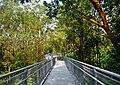 Singapore Southern Ridges Hilltop Walk 08.jpg