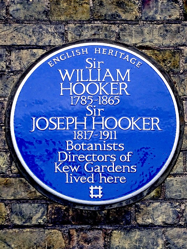 William Jackson Hooker and Joseph Dalton Hooker blue plaque - Sir William Hooker  1785-1865  Sir Joseph Hooker  1817-1911  Botanists  Directors of  Kew Gardens  lived here