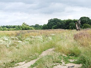 English: Site of demolished Smallholding Looki...
