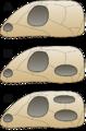 Skull comparison.png