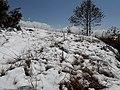 Snow in Kakani 20190228 113319.jpg