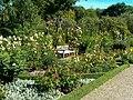 Sofiero slott Rosenträdgården2.jpg