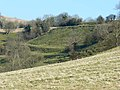 Soil creep on the slope west of Prospect Stile, Kelston - geograph.org.uk - 696394.jpg