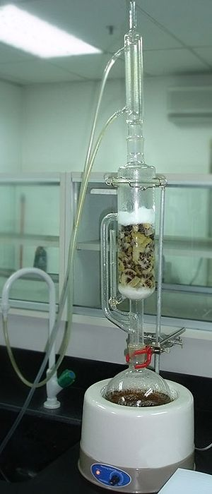 Soxhlet extractor - Fruit extraction in progress. The sample is placed in the thimble.