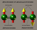 Spinisomers of molecular hydrogen.png