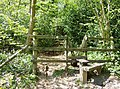 Squeeze stile into Silk Wood - geograph.org.uk - 488610.jpg