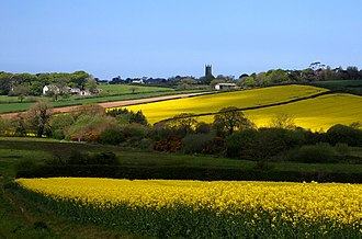 St Mabyn - View of St Mabyn with fields of flowering rape.