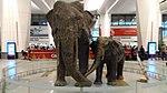 Statue of elephant and it's cub at Indira Gandhi International Airport.jpg