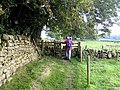 Stile on Hadrian's Wall National Trail - geograph.org.uk - 987741.jpg