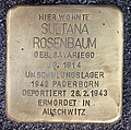 Stolperstein Rungestr 16 (Mitte) Sultana Rosenbaum.jpg