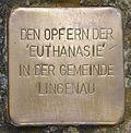 Stolperstein für Die Opfer der Euthanasie.jpg
