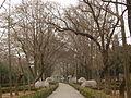 Stone Elephant Road - xiezhi and camels - P1060449.JPG