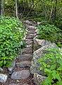 Stone steps on Ranger's Trail, Poke-O-Moonshine Mountain.jpg