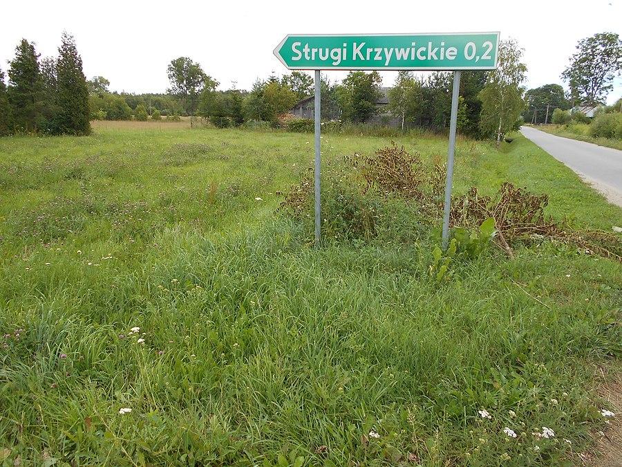 Strugi Krzywickie
