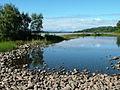 Summer morning at Kincraig - geograph.org.uk - 1574277.jpg