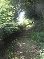 Sunlit footpath between Northcroft Lane and The Sun - geograph.org.uk - 1361687.jpg