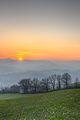 Sunset - Castellarano (RE) - December 30, 2012 - panoramio.jpg