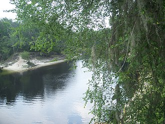 Suwannee River State Park - Image: Suwannee River State Park river 02