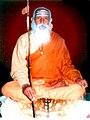 SwamiGovindanandTirth.jpg