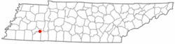 Location of Enville, Tennessee