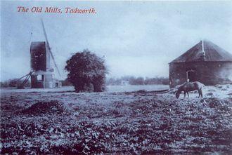 Tadworth - Some of the windmills, c.1910