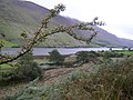 Tal-Y-Llyn from the old road. - geograph.org.uk - 233378.jpg