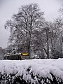 Talbot Woods - hedge and bus on a snowy Talbot Avenue - geograph.org.uk - 2183372.jpg